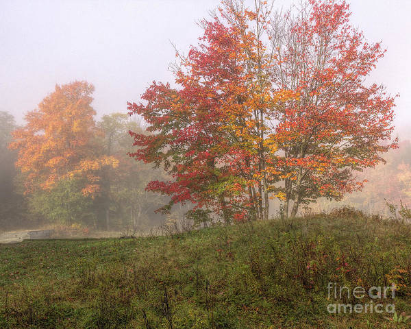 Photograph - Fall In The Adk by Rod Best