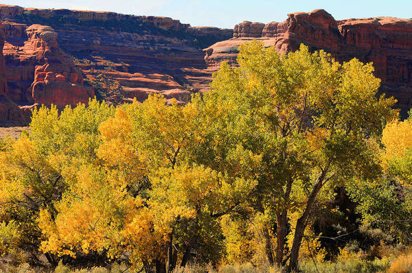 Photograph - Fall In The Arches by Lawrence Christopher
