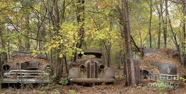 Clunker Wall Art - Photograph - Fall In The Cars by Linda D Lester