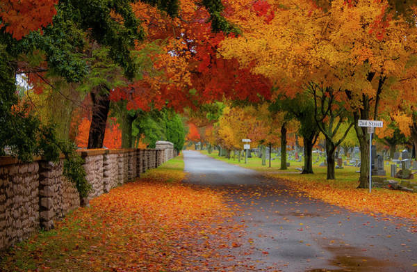 Photograph - Fall In The Cemetery by Allin Sorenson