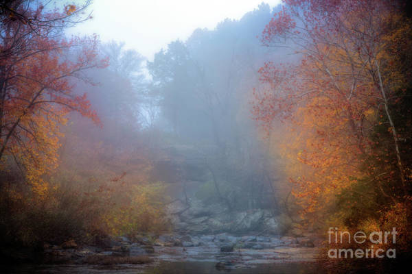 Photograph - Fall In The Fog by Larry McMahon