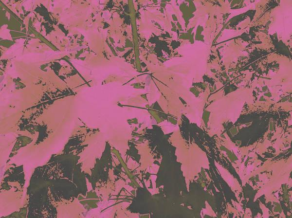 Fall Leaves #6 Art Print