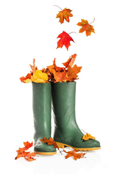 Wall Art - Photograph - Fall Leaves In Boots by Amanda Elwell