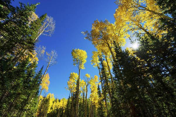American Southwest Photograph - Fall Light by Chad Dutson