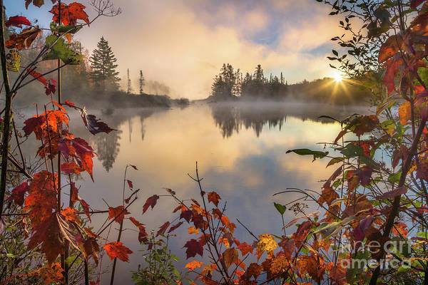 Wall Art - Photograph - Fall Morning On The Pond by Benjamin Williamson