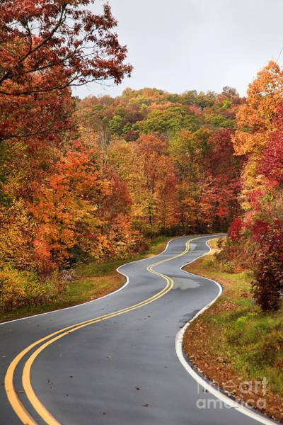 Photograph - Fall Mountain Road by Jill Lang
