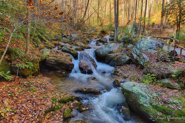 Photograph - Fall Mountain Stream 2 by Dillon Kalkhurst