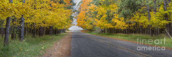 Bear Creek Photograph - Fall On Esch Road by Twenty Two North Photography