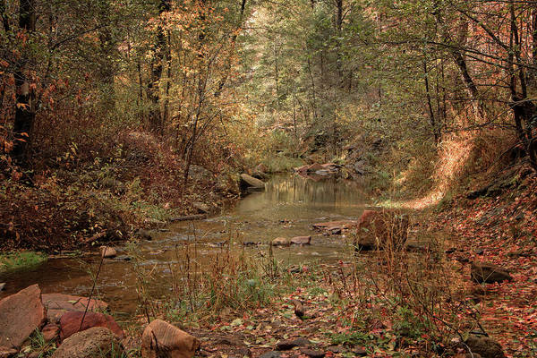 Photograph - Fall On Oak Creek by Teresa Wilson