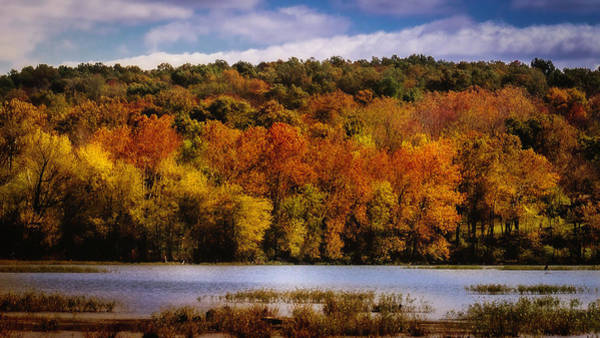 Photograph - Fall On Springfield Lake by Allin Sorenson