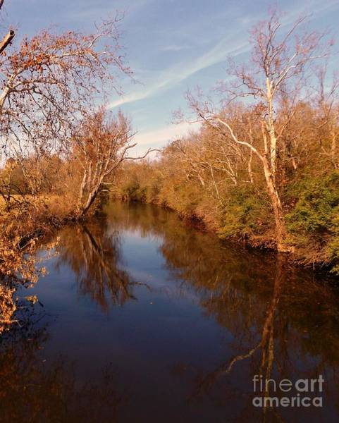 Photograph - Fall On The Elkhorn by David Neace
