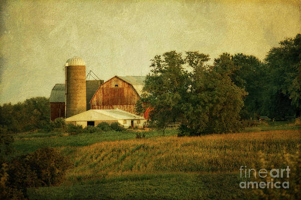 Wall Art - Photograph - Fall On The Farm - Belgium, Wi by Mary Machare