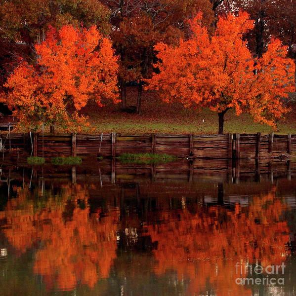 Wall Art - Photograph - Fall On Toledo Bend by Michael Tidwell
