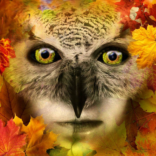 Digital Art - Fall Owl by Artful Oasis