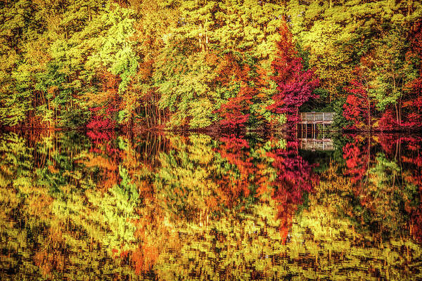 Wall Art - Photograph -  Fall Refections by Linda Eszenyi