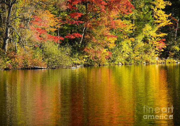 Photograph - Fall Reflections by Alana Ranney