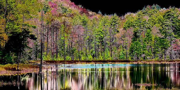 Photograph - Fall Reflections by David Patterson