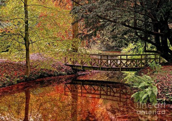 Photograph - Fall Reflections by Martyn Arnold