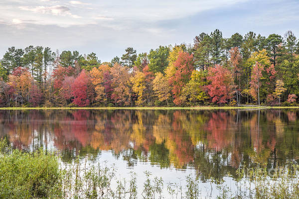 Photograph - Fall Reflections On Lake Chesdin by Jemmy Archer
