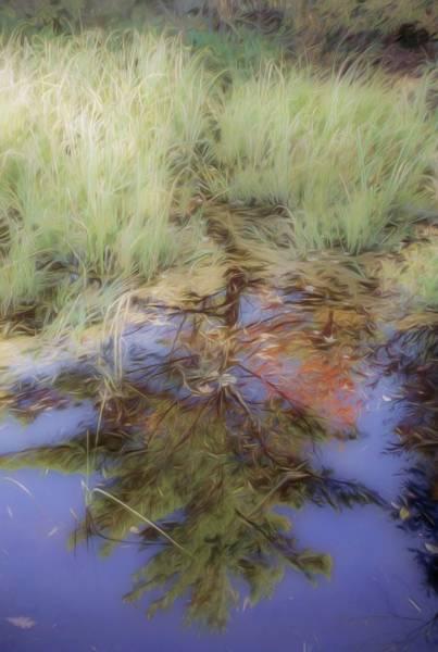 Digital Art - Fall Reflections by Rusty R Smith