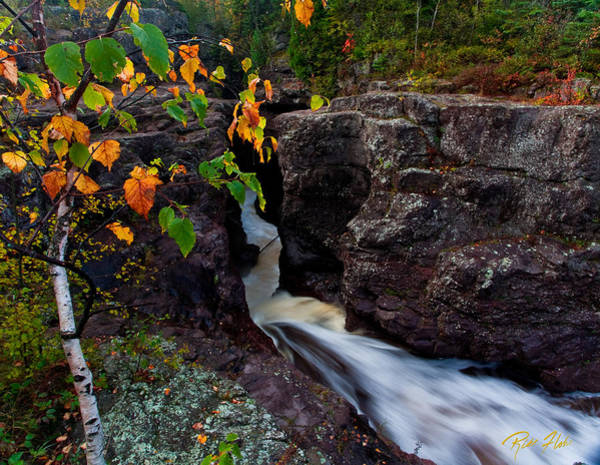 Photograph - Fall Remnants At Temperance by Rikk Flohr