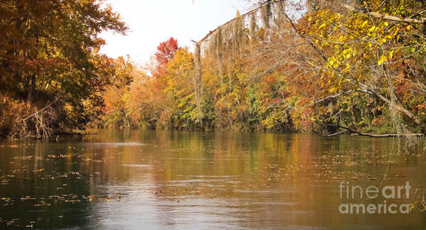 Photograph - Fall - Savannah River Canal  by Andrea Anderegg