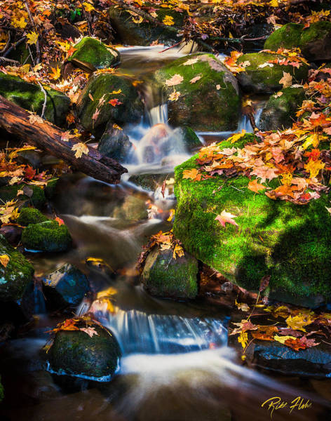 Photograph - Fall Seasonal Water Cascade by Rikk Flohr