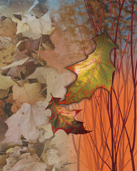 Wall Art - Digital Art - Fall Spectrum by Harold Shull