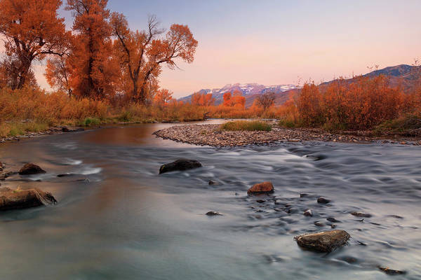 Wall Art - Photograph - Fall Sunrise At The Provo River by Johnny Adolphson