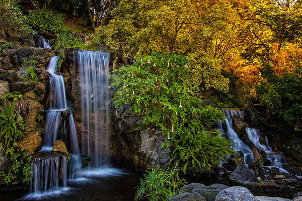 Photograph - Fall Water Fall by Harry Spitz