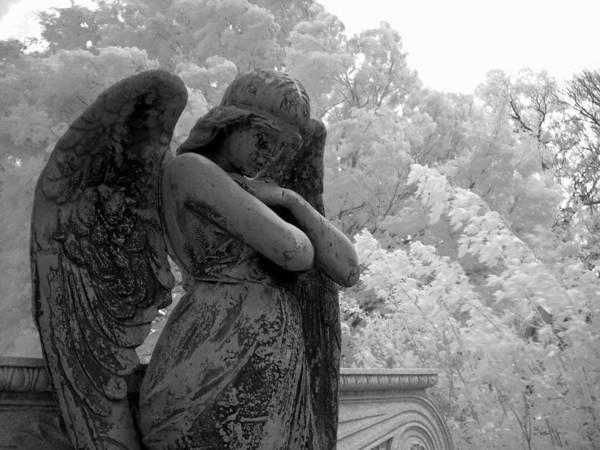 Linder Wall Art - Photograph - Fallen Angel by Jane Linders