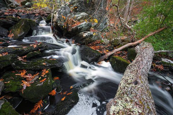 Photograph - Fallen In Danforth Falls by Brian Hale