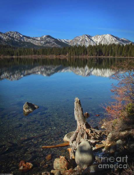 Fallen Leaf Lake Photograph - Fallen Leaf Lake Shoreline by Mitch Shindelbower