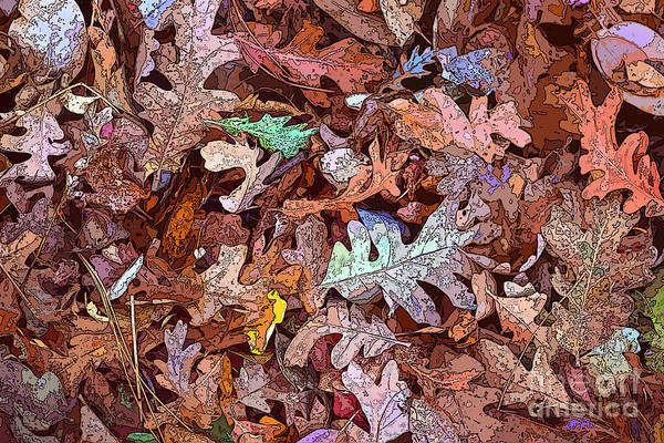 Wall Art - Digital Art - Fallen Leaves by Anthony Forster
