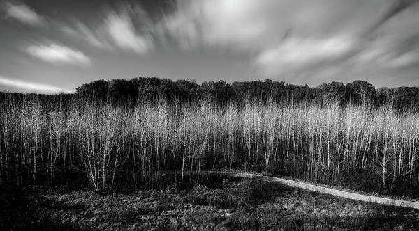Wall Art - Photograph - Fallen Timbers Battlefield by Chris Fleming
