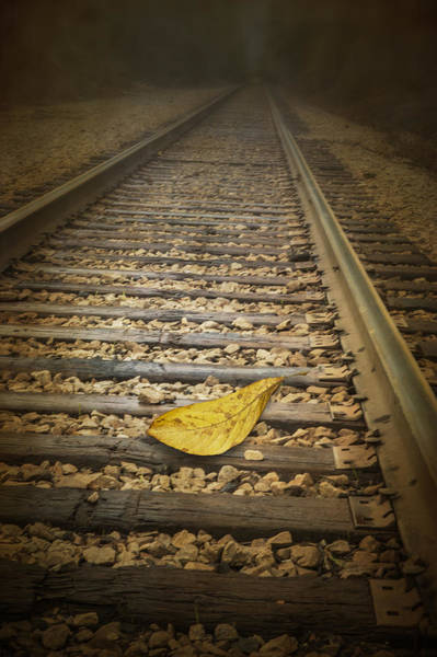 Railroad Tie Wall Art - Photograph - Fallen Yellow Autumn Leaf On The Railroad Tracks by Randall Nyhof