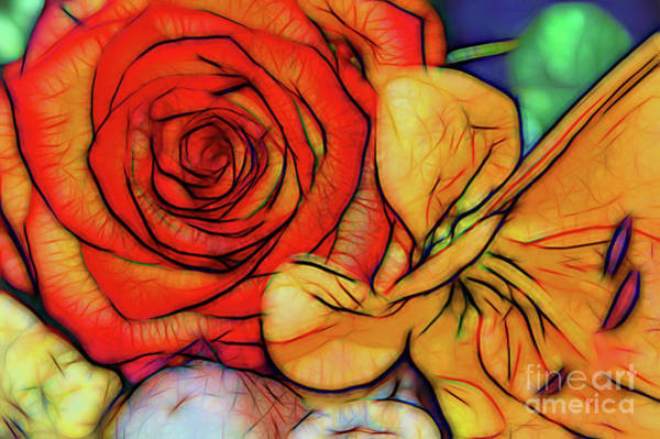 Photograph - Falling In Love With My Lily by Diana Mary Sharpton