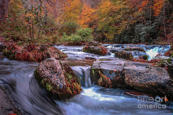 Photograph - Falling Mountain Stream by Tom Claud