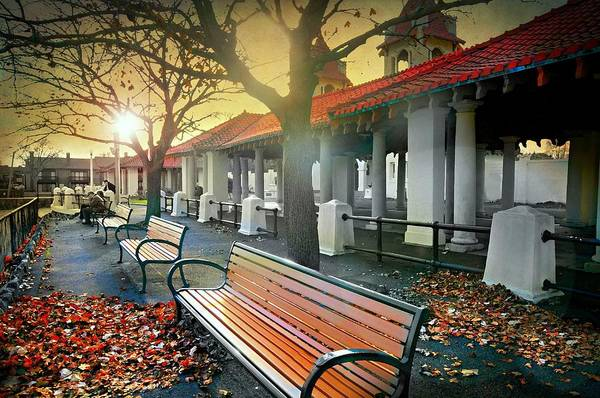 Wall Art - Photograph - Falling On The Bench by Diana Angstadt