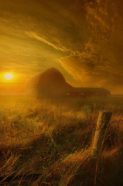 Photograph - Falling Through Time by Phil Koch