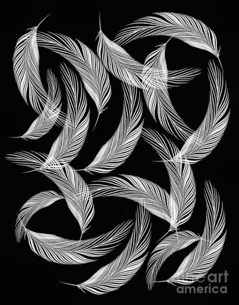 Digital Art - Falling White Feathers by Smilin Eyes  Treasures