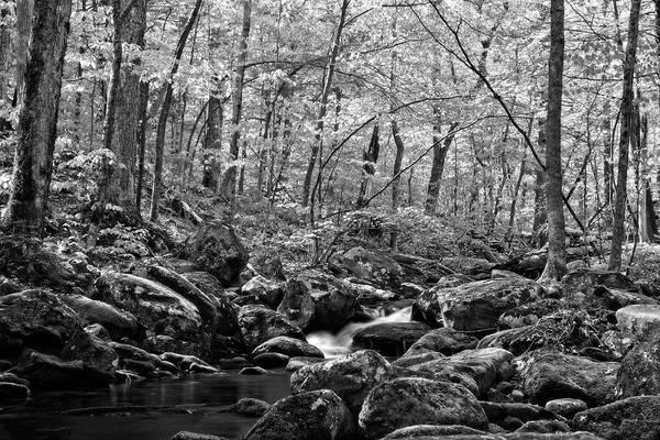 Wall Art - Photograph - Falls Brook Rush Black And White by Allan Van Gasbeck