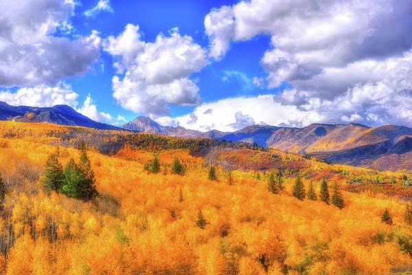 Wall Art - Photograph - Fall's Color by Midori Chan