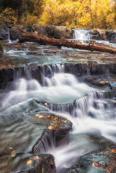 Photograph - Falls In The Fall by CA  Johnson
