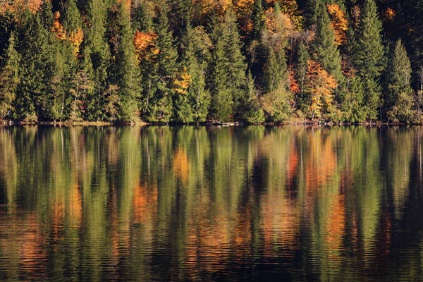 Photograph - Fall's Reflection by David Lunde