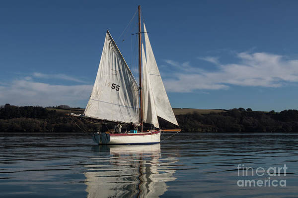 Photograph - Falmouth Working Boats by Brian Roscorla