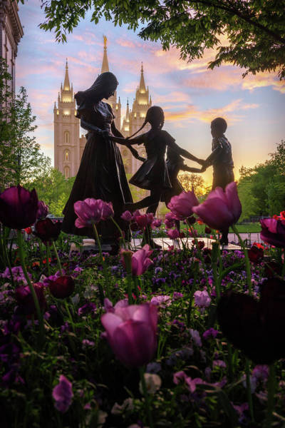 Photograph - Together Forever by Dustin LeFevre