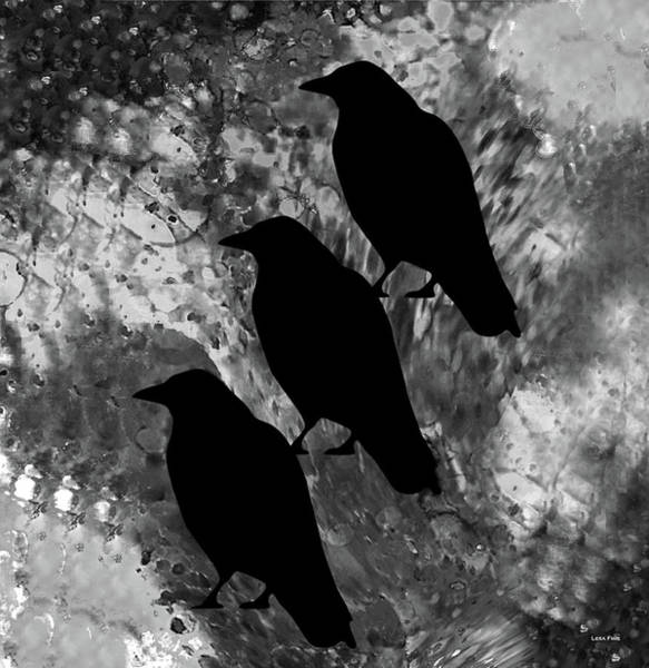 Mixed Media - Family Crow Black And White by Lesa Fine