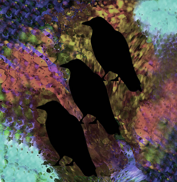 Digital Art - Family Crow Black Soft by Lesa Fine