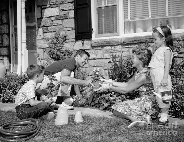 Photograph - Family Gardening, C.1960s by H. Armstrong Roberts/ClassicStock